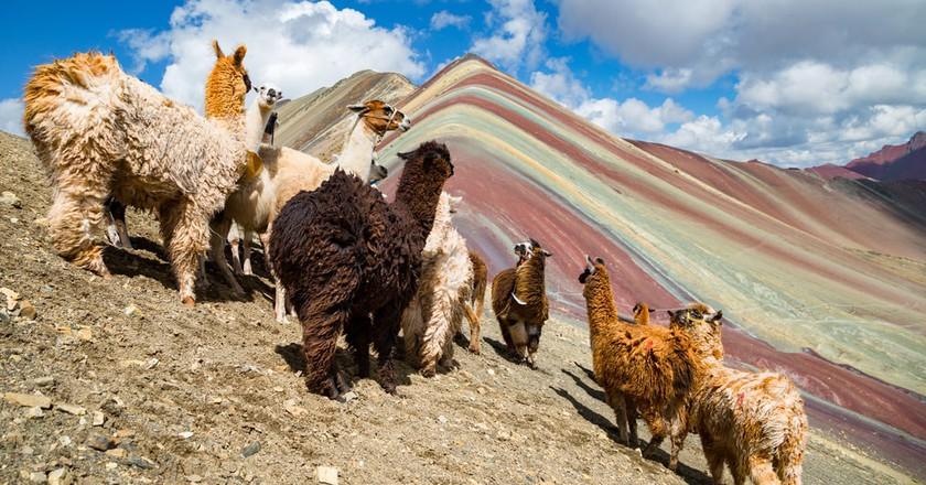 Vinicunca Mountain, Peru