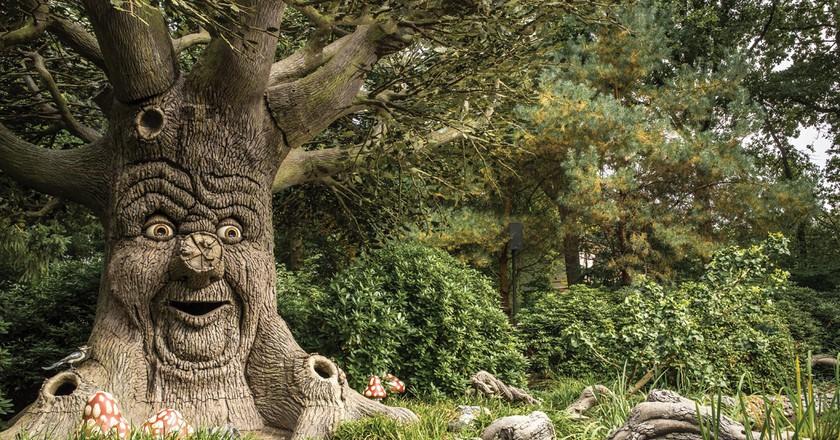 The enchanted, storytelling tree