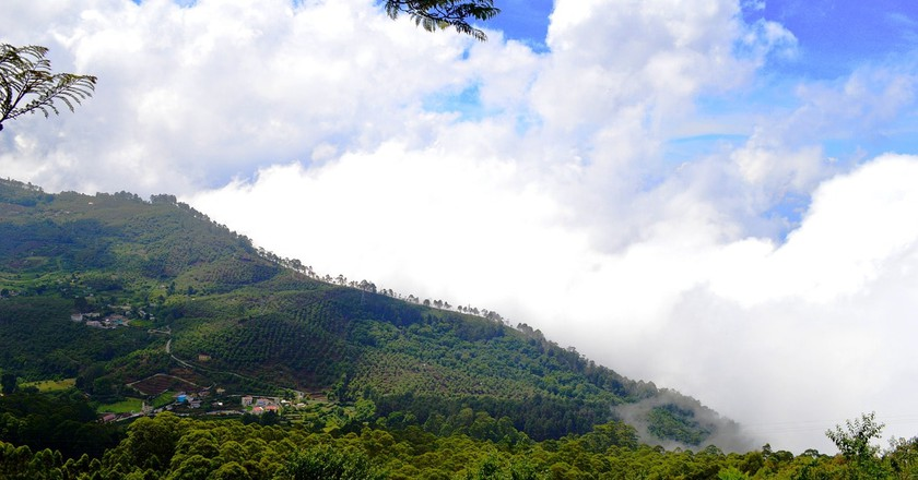 Tamil Nadu is home to some of India's greenest destinations |