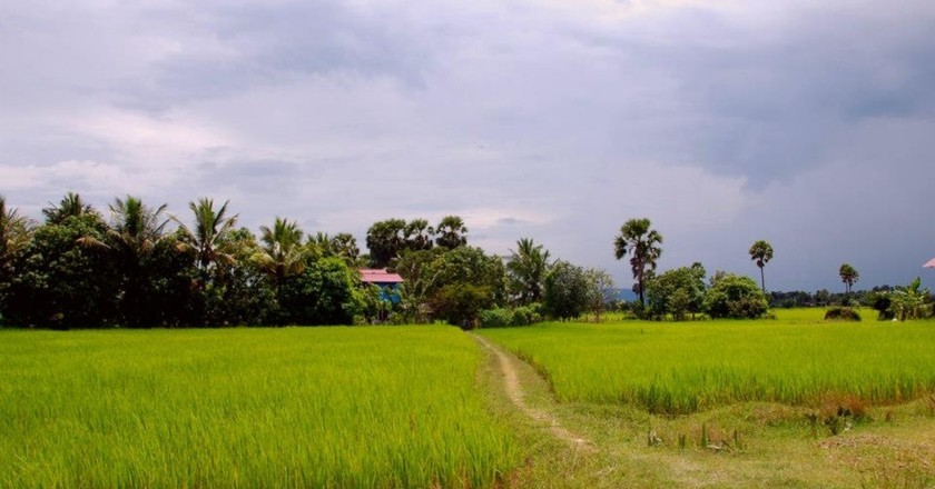 Immerse yourself in rural Cambodian life.
