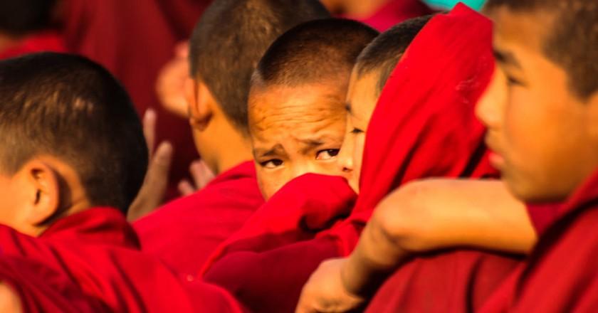 Young Tibetan Buddhist Monks