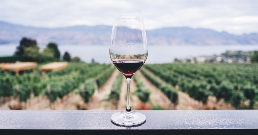 Pinotage is a uniquely South African varietal with a fascinating history