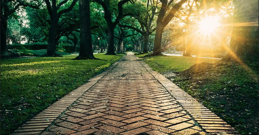 © Mitchel Jones/Flickr