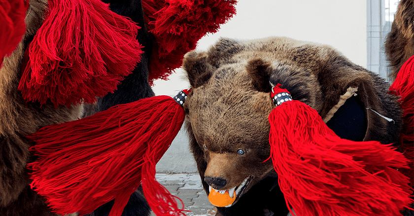 Romania's Dancing Bears   © Alex Dima