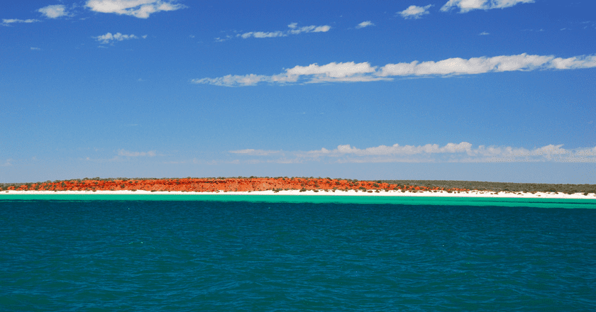 Shark Bay | © Robert Young/Flickr