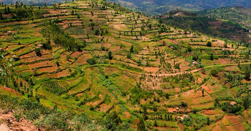 Rural Rwanda    © Nick Fraser / Flickr