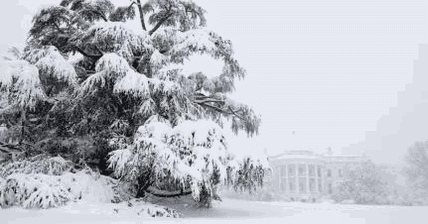 18 Photos That Prove Washington, DC is a Winter Wonderland