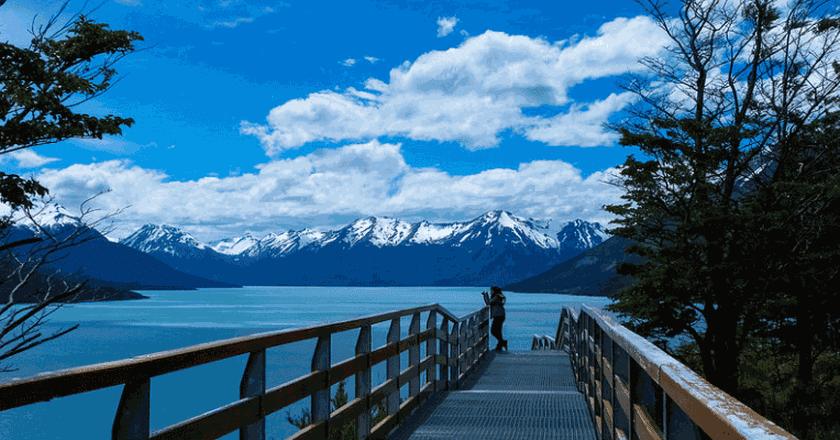 Patagonian Beauty | © Douglas Scortegagna | Flickr