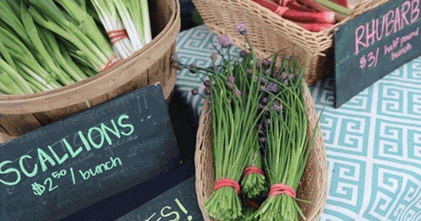 Best Street Food Markets in Anchorage, Alaska