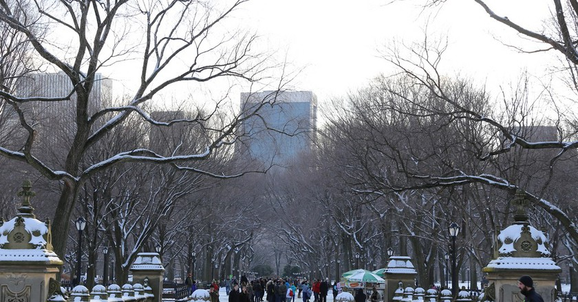 Central Park New York | ©Mack Male/Flickr