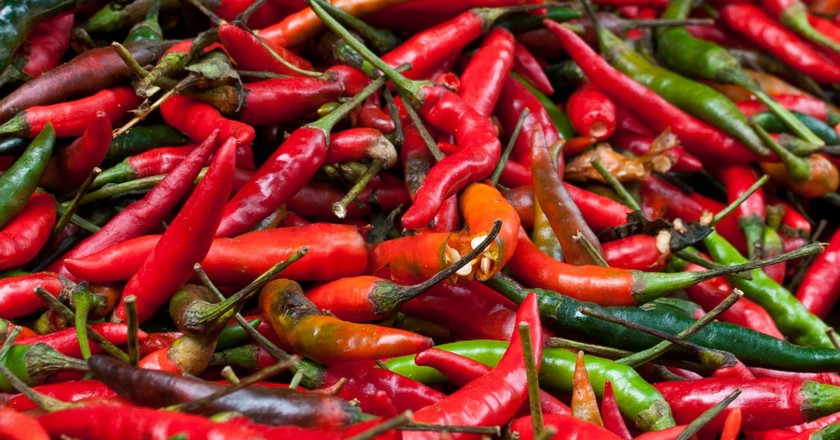 A Farmer Has Grown a Chilli So Spicy, It Could Potentially Kill You