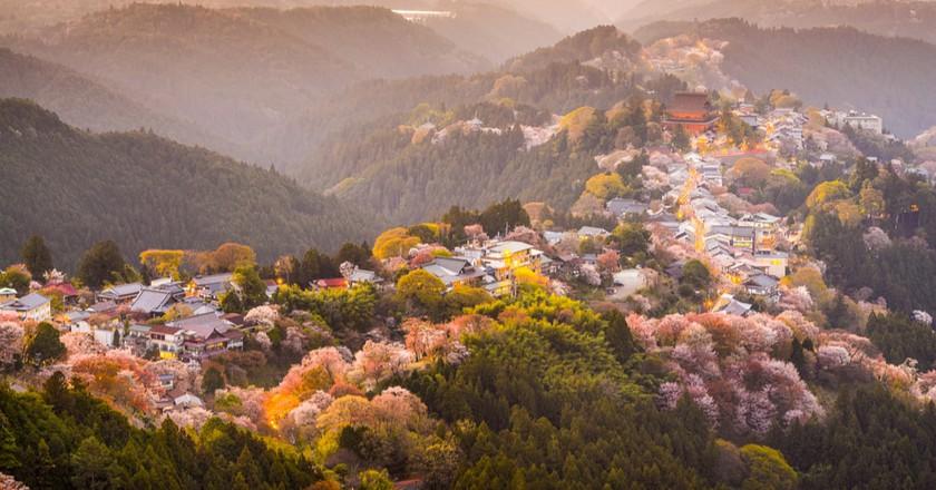 Yoshinoyama in Nara   © ESB Professional/Shutterstock