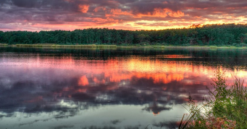 Huntington Beach State Park, South Carolina © Fran Trudeau/Flickr