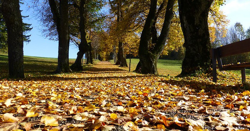 Best Parks In Indianapolis To Explore