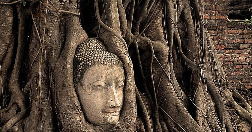 Buddha Head in a tree| © Tommy Tang/WikiCommons