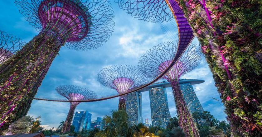 Singapore Gardens  © Kanuman/Shutterstock