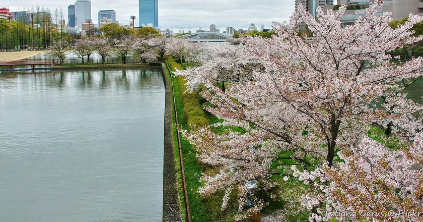 The Top 10 Michelin-Starred Restaurants In Osaka