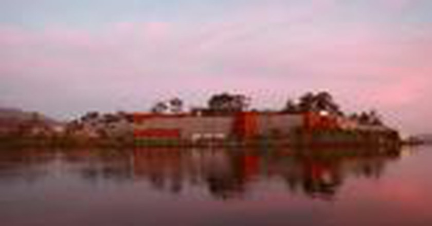 Eccentric Expressions: Tasmania's Museum of Old and New Art
