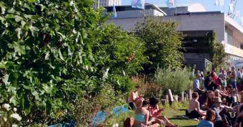 Best Summer Beer Gardens In London