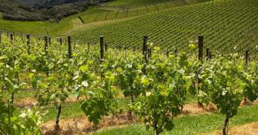 Virginia's 10 Most Beautiful Vineyards And Wineries