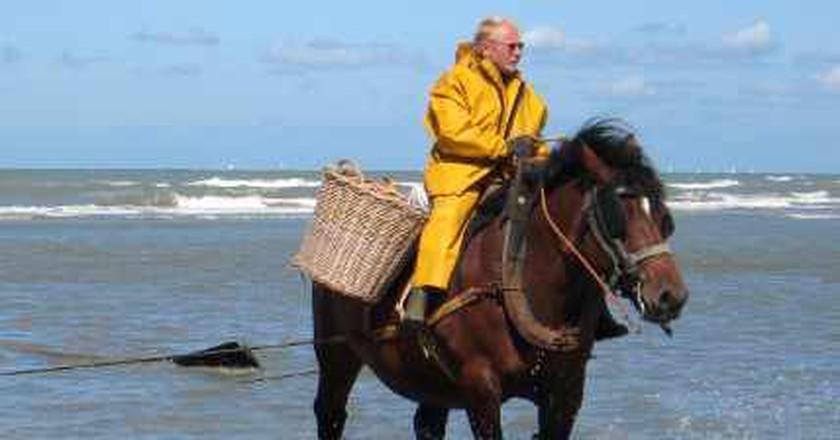Shrimp Fishing on Horseback: An Enduring Belgian Tradition