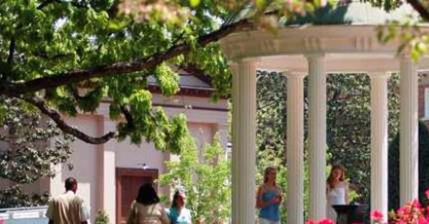 The 10 Best Restaurants In Chapel Hill, North Carolina