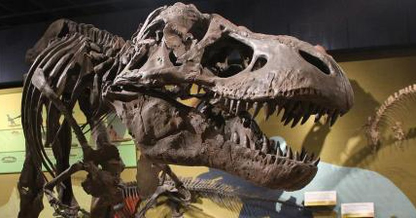 The 5 Best Museums in Cleveland