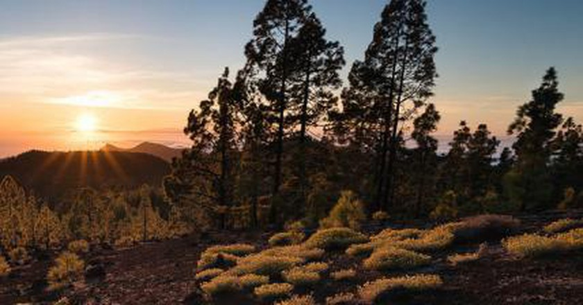 The Top 10 Things To See and Do in Tenerife