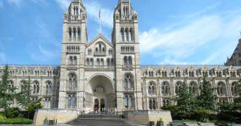 Five Reasons To Visit London's Natural History Museum