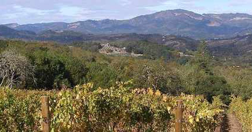 Wine Regions To Visit Outside Of Napa Valley, California