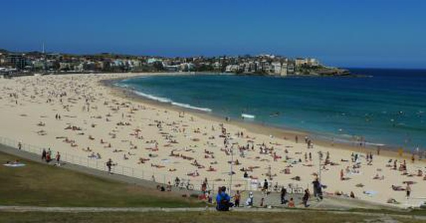 The Top Things To Do and See in Bondi, Sydney