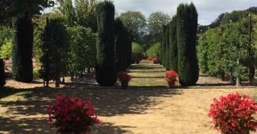 Filoli Gardens: Spotlight On Sculptures