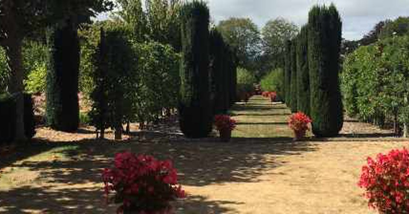 Filoli gardens spotlight on sculptures