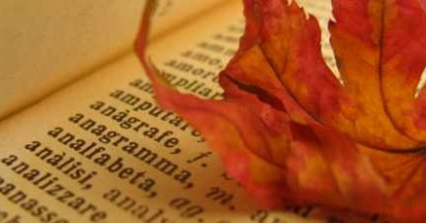 7 Books You Should Read This Fall