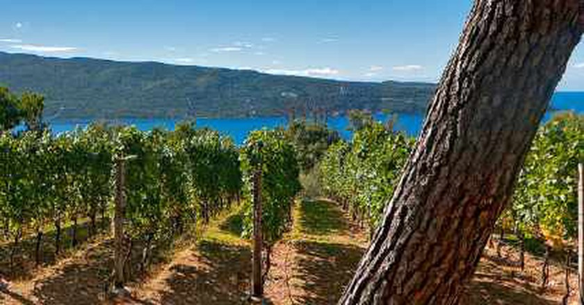 The Top 10 Vineyards In Montenegro
