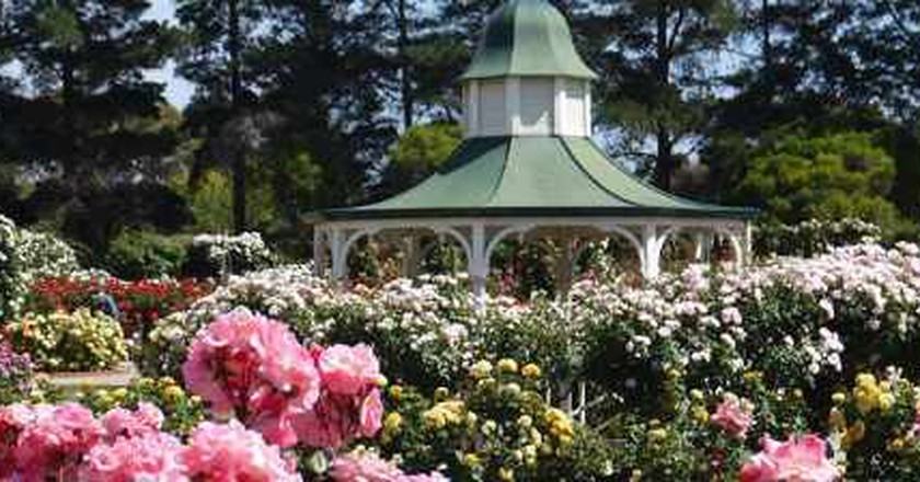 Melbourne's Top 5 Gardens And Parks For Indulging In Spring's Beauty