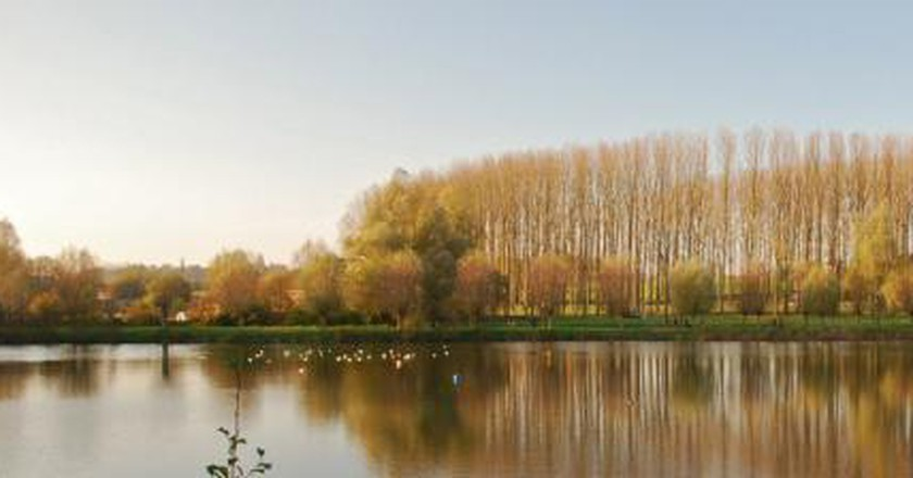 Best Parks In Brussels For Indulging in Fall's Beauty