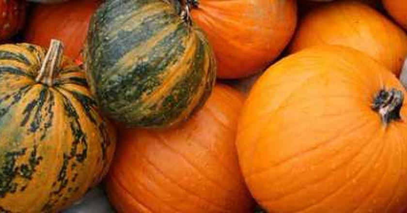 NYC's October Cultural Calendar