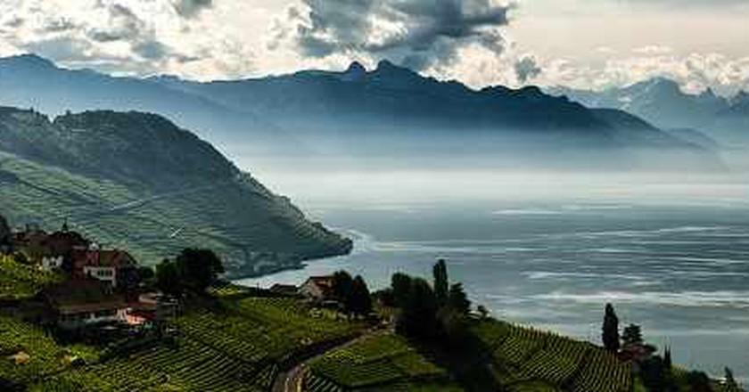 Amazing Swiss Wine Regions To Discover