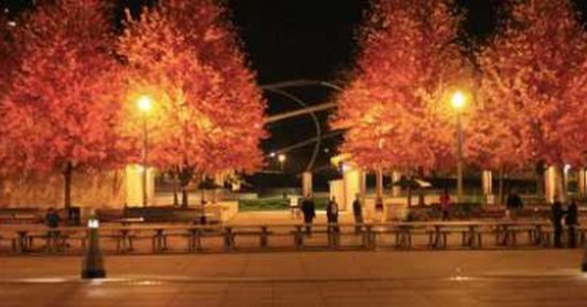The Best Ways To Experience Fall In Chicago