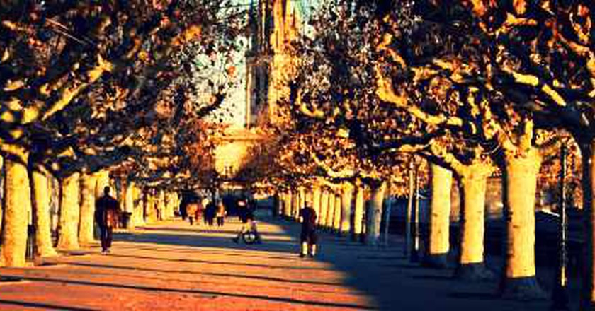 The Most Beautiful Parks in Montpellier