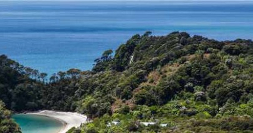The 10 Best Things to Do and See in Nelson