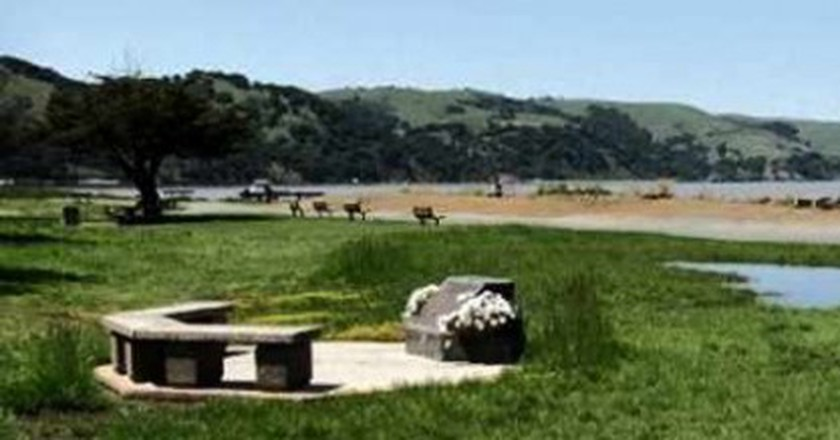 Best Parks In East Bay For Dog Lovers Craving Open Space