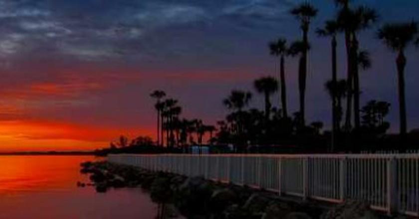 The 10 Best Bars In Davis Islands, Tampa