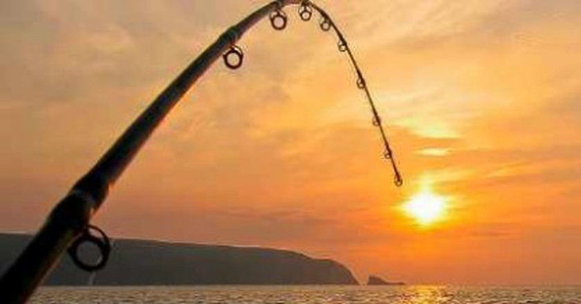 A Look At Sport Fishing In New Zealand