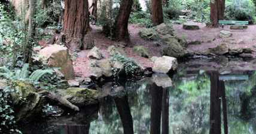Top 10 Lively Activities Around Lake Merced, California