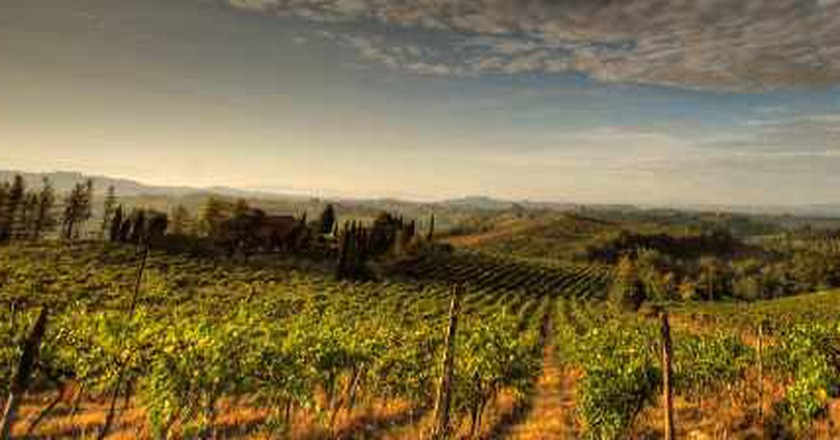 The Top 10 Restaurants In Tuscany