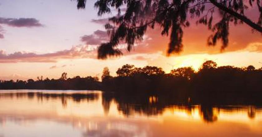 The 10 Best Restaurants In Ivanhoe Village, Orlando