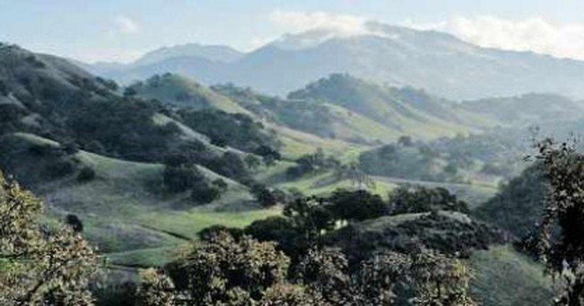 Top 10 Things To See And Do In Walnut Creek