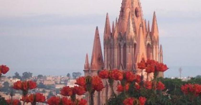 The 10 Best Restaurants In San Miguel de Allende, Mexico